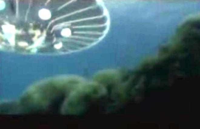 ufo mare