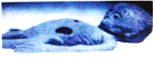 alieno mummia
