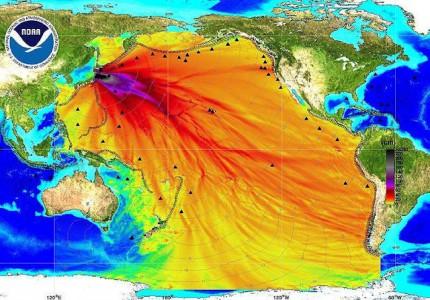fukushima radioattività